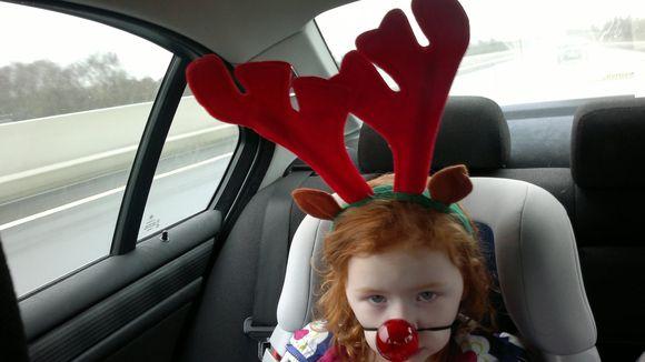 Back Seat Reindeer.jpg