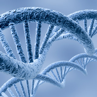 Genome IStockphoto David Marchal